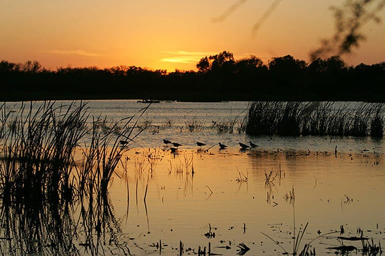 The sun sets over the Santa Ana National Wildlife Refuge.